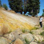 Dirtglue regular eco friendly soil stabiliser erosion control for embankments