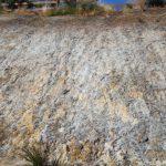 Dirtglue regular prevents soil erosion on embankments