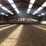 Dustless control dust equestrian arenas