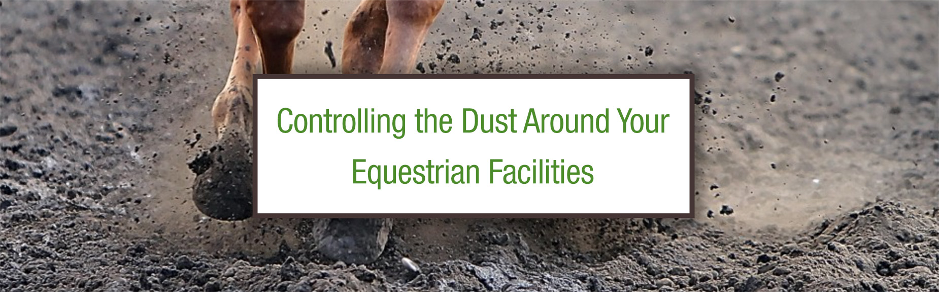 dust control for equestrian facilities